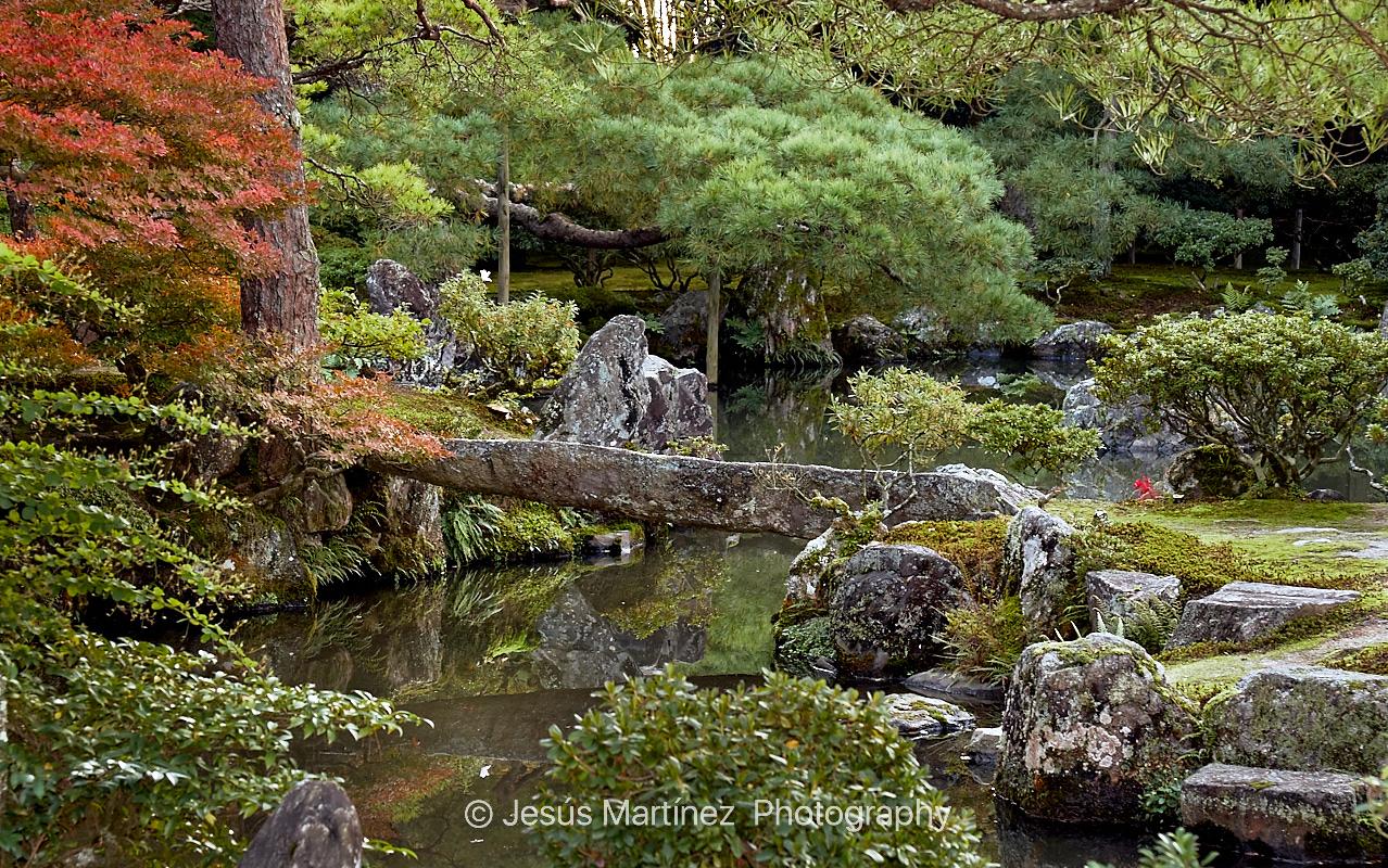 Jardín en Kyoto